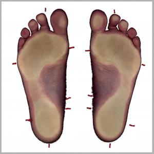 2D scan marks kader
